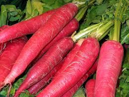 lobak merah